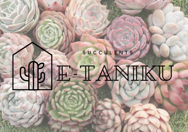 E-TANIKU(イータニク)